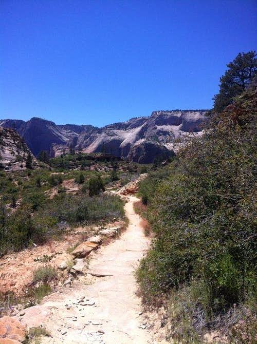 East RIM Trail Zion