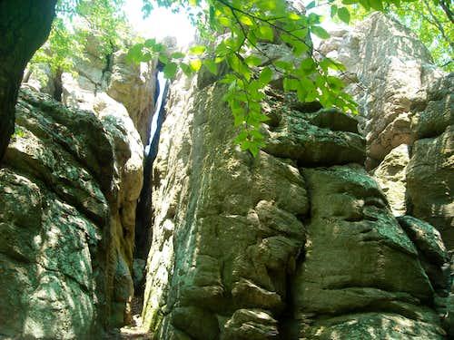 Lewis Rocks