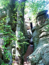 More of Lewis Rocks