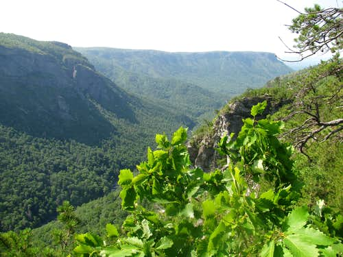 South End of Linville Gorge
