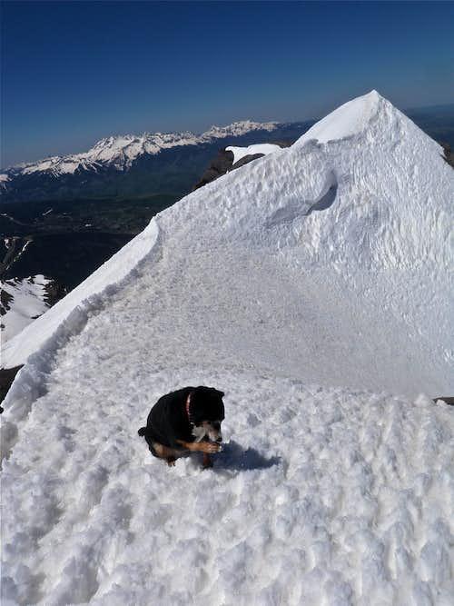 Summit of Mount Emma
