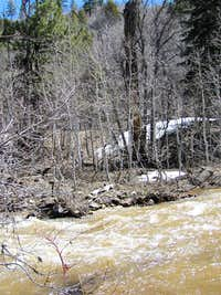 Wildcat Stream