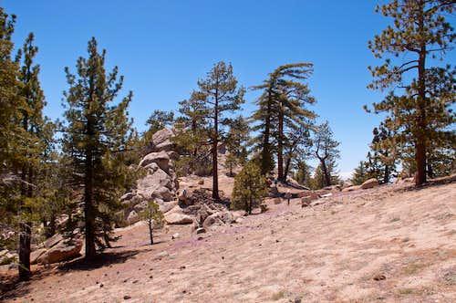 Winston Peak West Ridge
