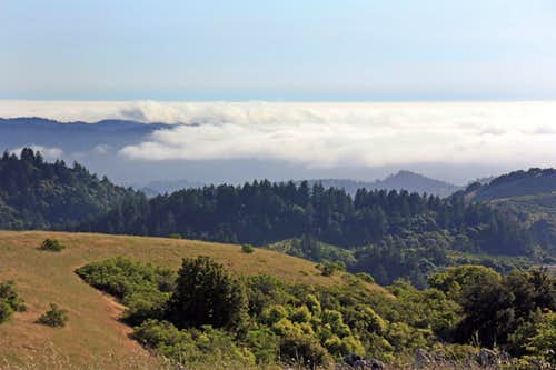 Pacific marine fog layer