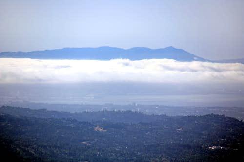 Mt. Tamalpais from Black Mountain