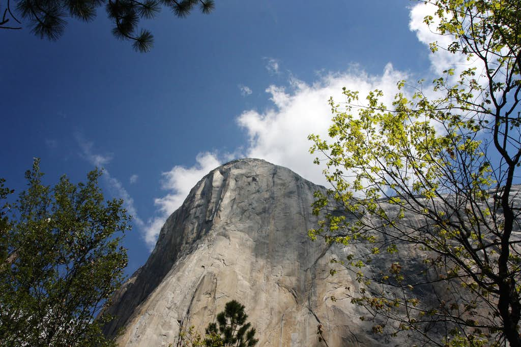 From the base of El Capitan