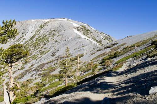 Mt. Baldy from DBB