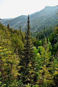 Robinson Creek Gorge