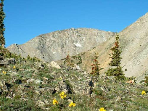 7/11/04: Mascot Peak, from...