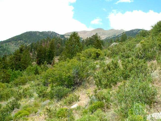 7/11/04: View of Mascot Peak...