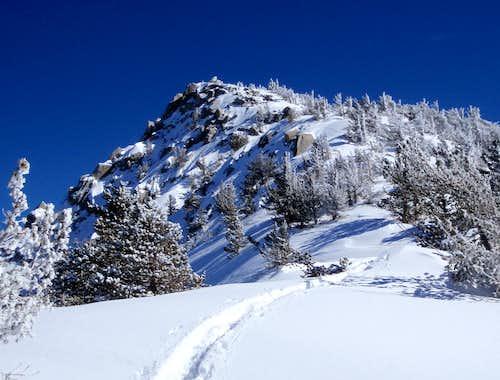 San Jacinto NW Ridge