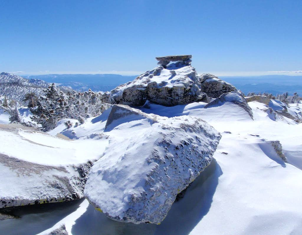 The Summit In February