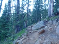 Humphreys Peak Trail