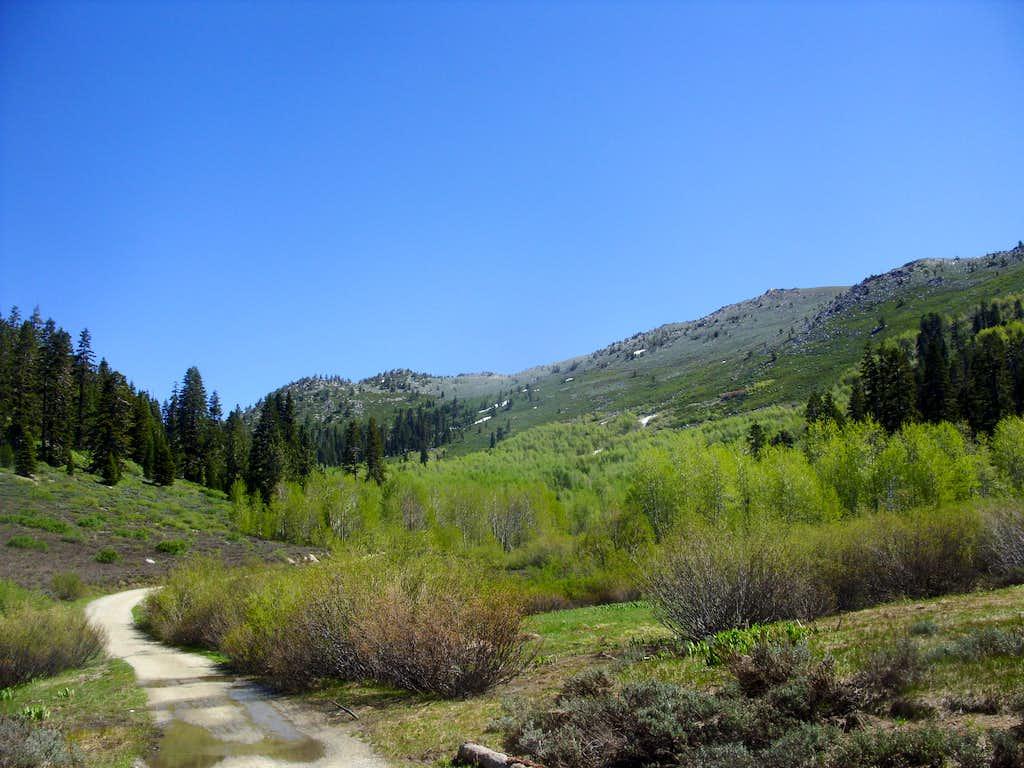 Heading up North Canyon June 26 2011