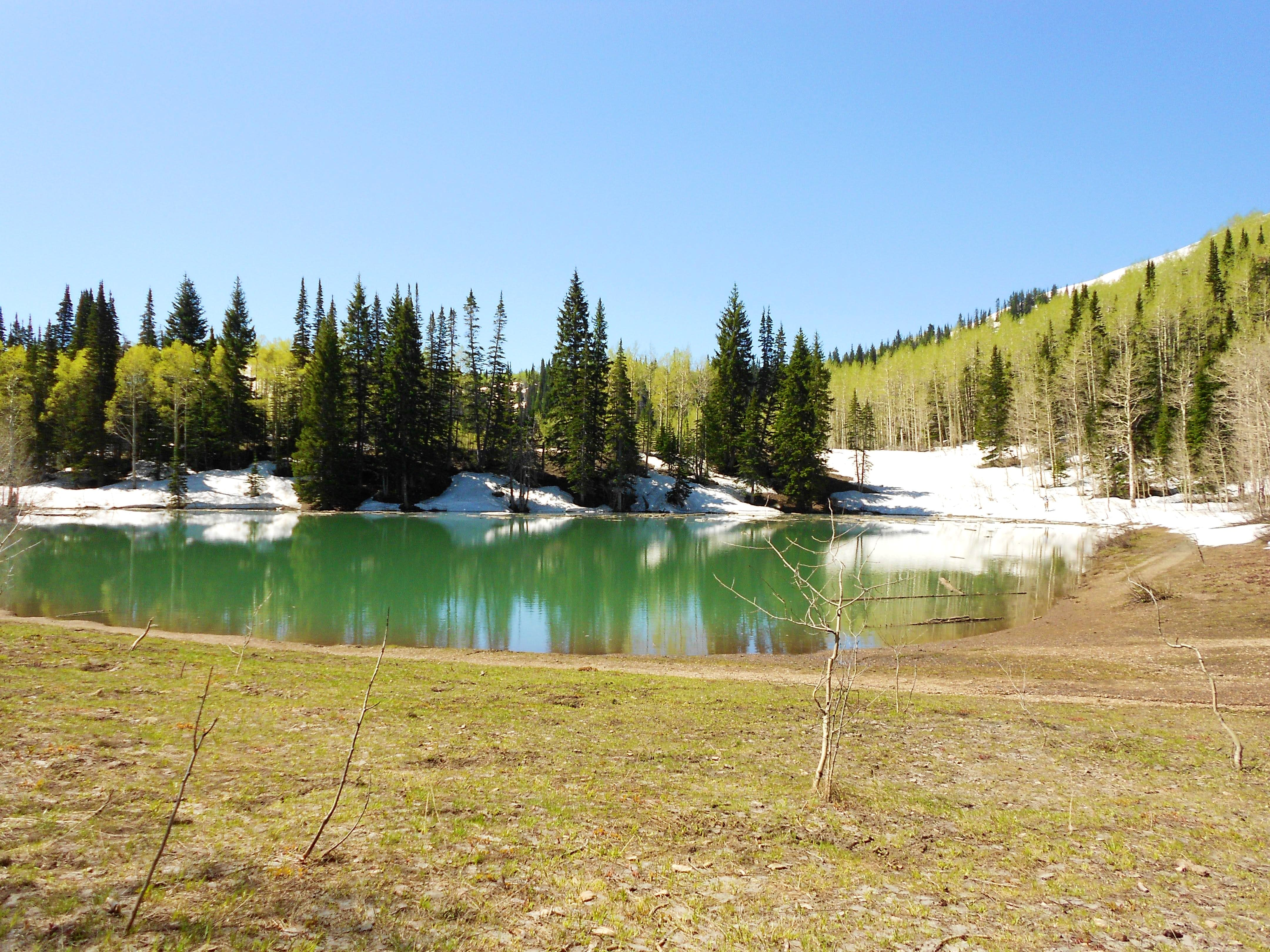 Dayhike to Dog Lake