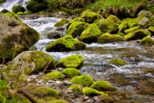 Bystra stream