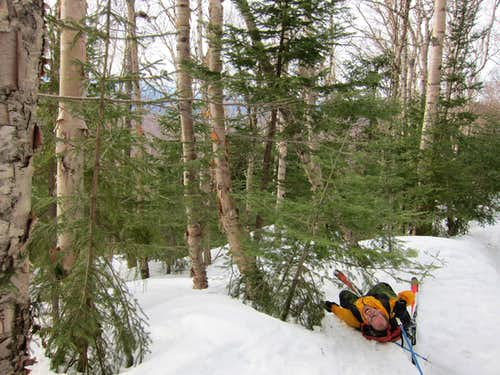 Backcountry skiing in the White Mountains