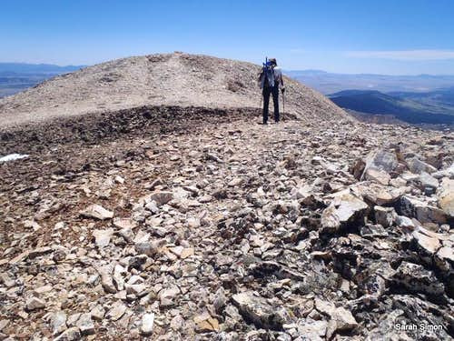 Summit cairn in sight!