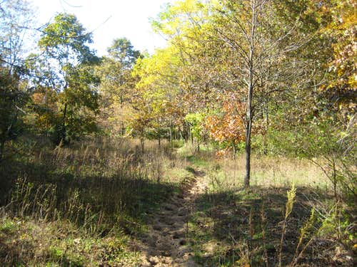 North Country Trail - Barry State Game Area (south)