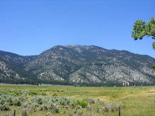 Duane Bliss Peak from Jacks Valley