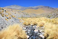 Quebrada on the approach to Laguna Blanca