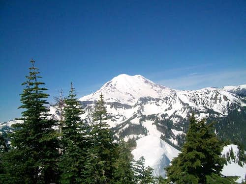 Mount Rainier from the summit