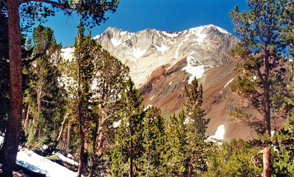 Mt. Morrison from McGee Mtn. northwest slope