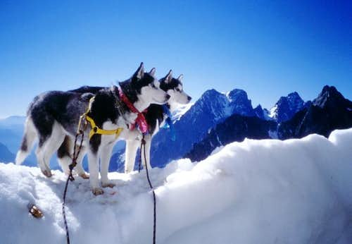 Special climbers at Pic de Neige Cordier