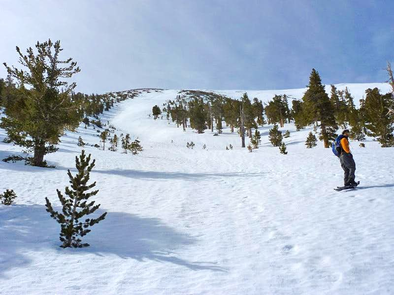 Spring Ascent of San Gorgonio\'s North Face