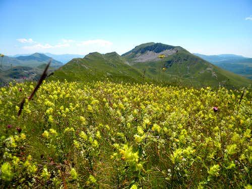 Over the Lebrsnik's ridge
