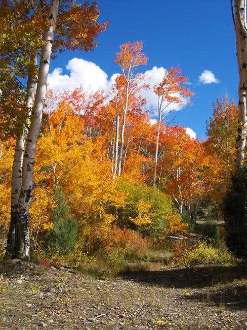 Colorado's colors. Entrance...