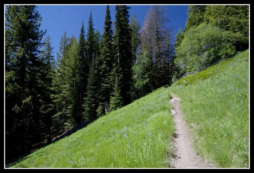 Horsehead Pass trail