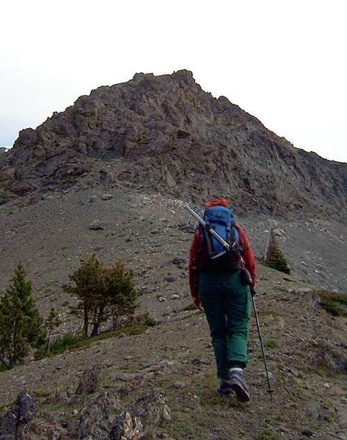 Southwest Ridge, Little Dog Mountain