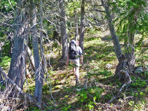 Heading off Trail and onto the Ridge