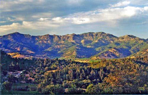 Palisades Napa Valley
