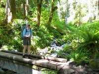 Fresh water sources - Hoh River Trail