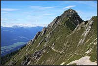 Ascending Spitzegel from the east