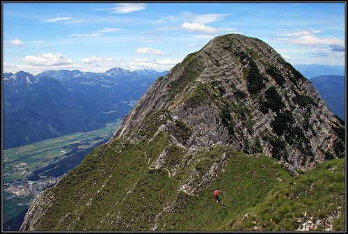 The summit of Spitzegel from the E
