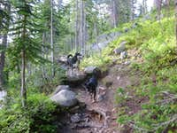 Thomas Lakes Trail