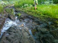 Ibapah Quick Mud