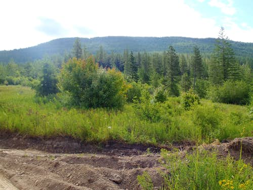 Huckleberry Mountain