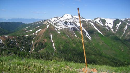 Stake on Swallow Rocks Summit