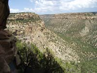 Mesa Verde Canyon from Balcony House