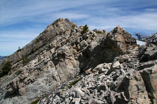 Cave Mountain-- Summit Ridge