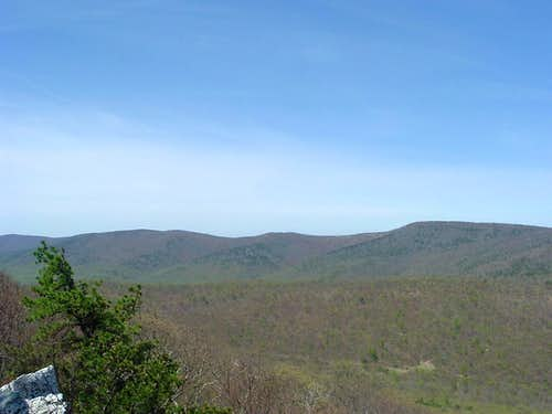 Great North Mountain from Tibbet Knob