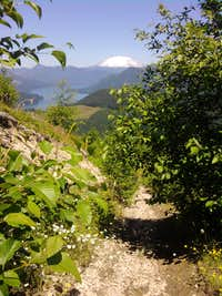 Tum Tum Mtn Summit Trail