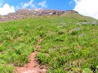 Teocalli Mountain Trail