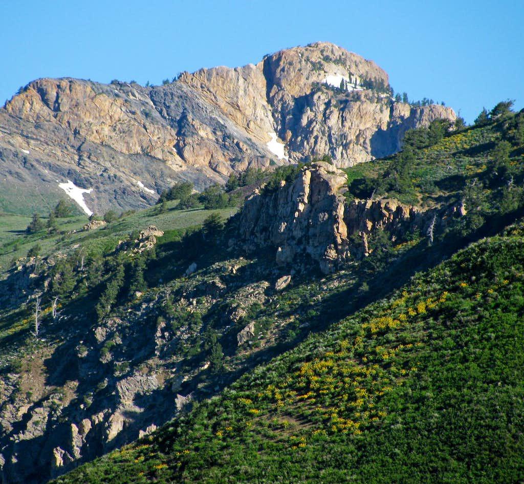 Willard Peak from Skyline Trail