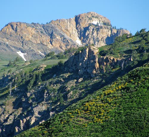 Willard Peak from Skyline Trail