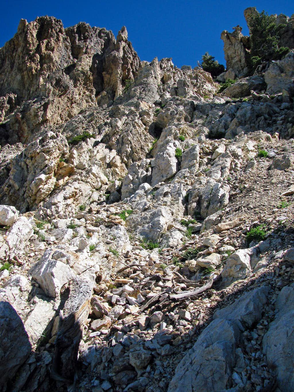 Willard rock scramble